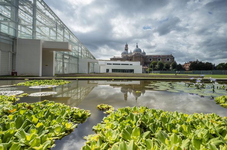 Orto botanico di Padova - image 3