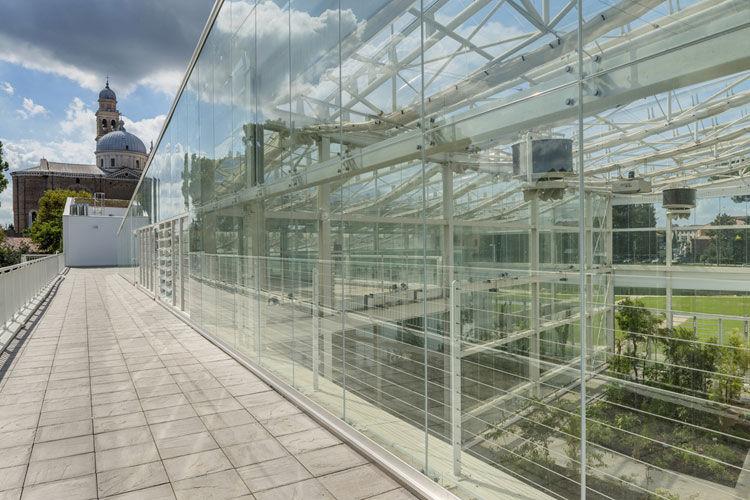 Orto botanico di Padova - image 4