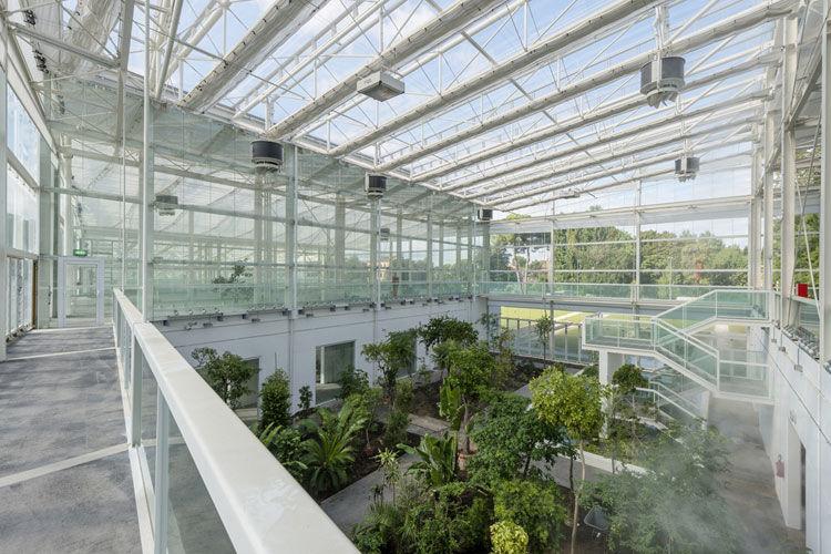 Orto botanico di Padova - image 5