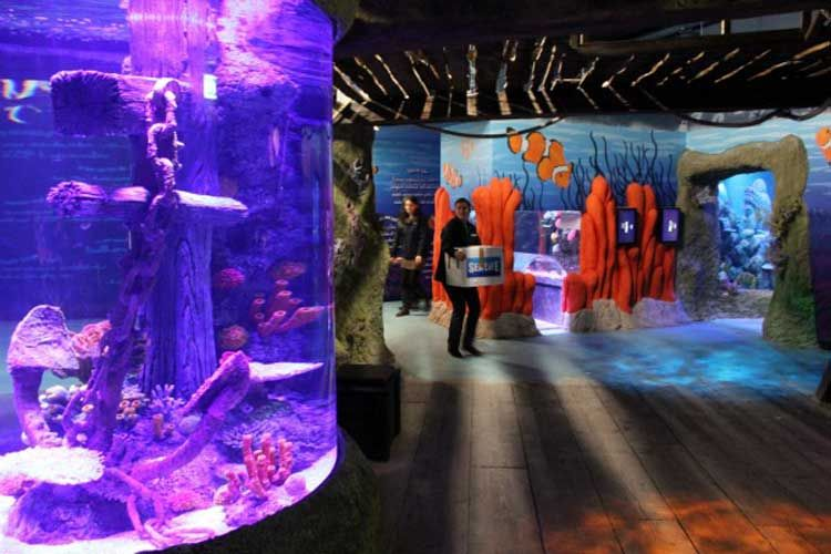 Acquario SEA LIFE Jesolo - image 3